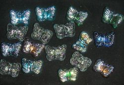 Glasnuggetschmetterlinge