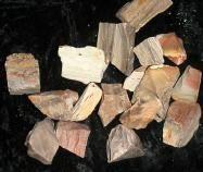 Brunnenfüllsteine - Dekoedelsteine versteinertes Holz