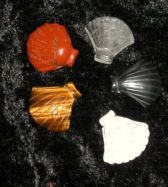 Edelsteinanhänger Muschel (Shell)